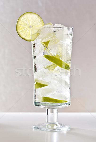Vodka citrus jég üdítő ezüst buli Stock fotó © grafvision