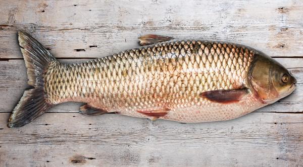 Gras karper vis oude houten voedsel Stockfoto © grafvision
