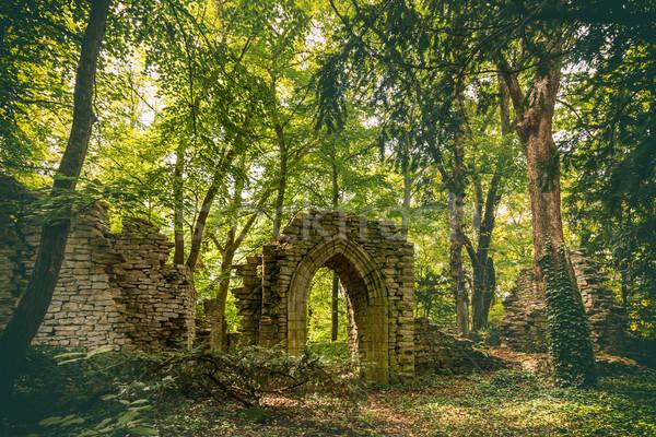 Vecchio castello rovine verde foresta pietra Foto d'archivio © grafvision