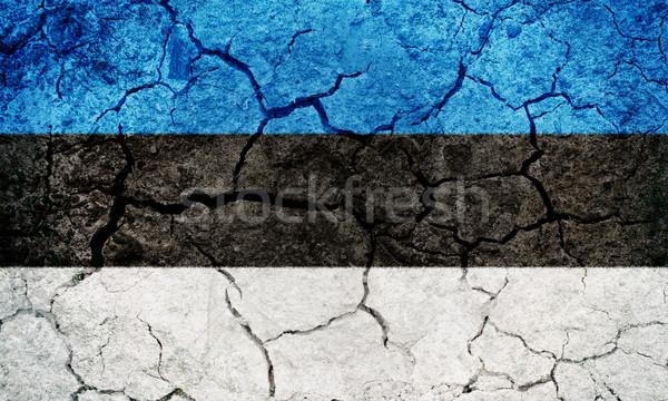 республика Эстония флаг высушите земле землю Сток-фото © grafvision