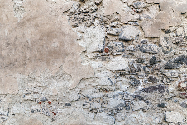 Weathered old cement wall  Stock photo © grafvision