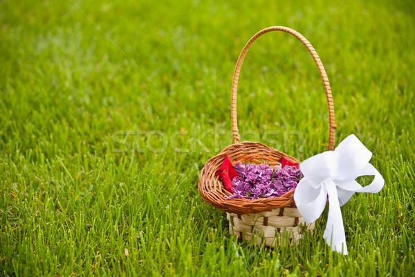 Lilac petals Stock photo © grafvision