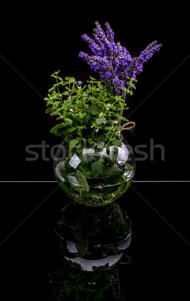 Levendula citrom balzsam aromás gyógynövények üveg Stock fotó © grafvision