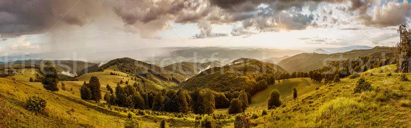 Zonsondergang bergen zomer landschap gras bos Stockfoto © grafvision
