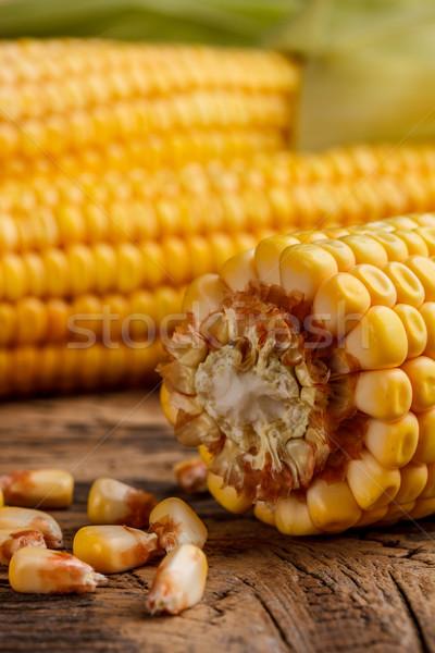 Corn cobs Stock photo © grafvision