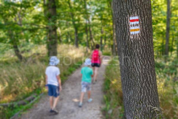 Touristic sign on tree Stock photo © grafvision
