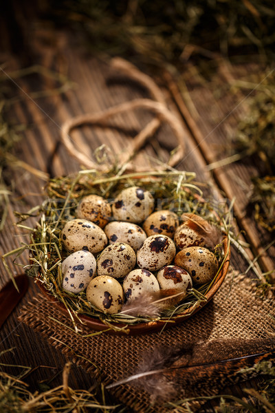 Quail eggs in hay nest Stock photo © grafvision