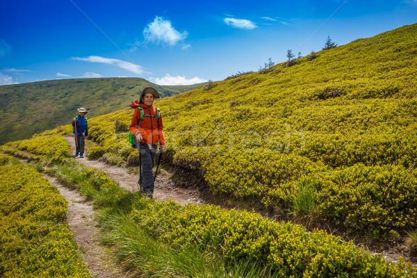 Gyerekek kirándulás román hegyek sétál nyom Stock fotó © grafvision