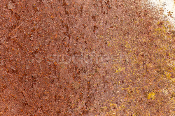 Pas paslı levha metal doku duvar soyut Stok fotoğraf © grafvision