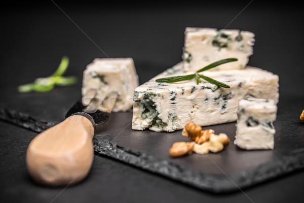 Queijo bolor preto fundo azul leite Foto stock © grafvision