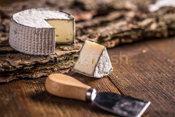 Vers brie plakje houten kaas boord Stockfoto © grafvision
