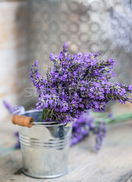 Bunch of lavender flowers Stock photo © grafvision