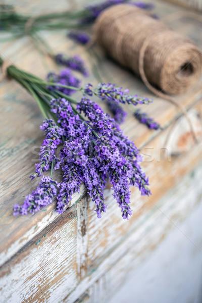 Bundle of lavender flowers Stock photo © grafvision