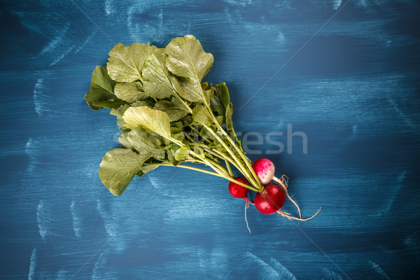 Stockfoto: Vers · klein · Rood · radijs · Blauw · voedsel