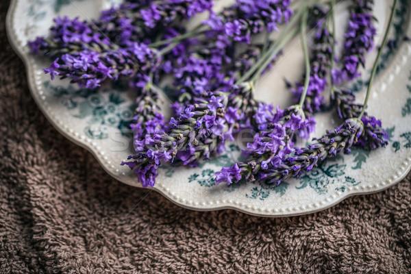 Vers lavendel bloemen bruin achtergrond schoonheid Stockfoto © grafvision