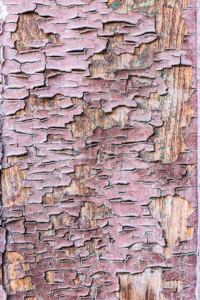 古い木材 ブラウン テクスチャ 抽象的な 背景 マクロ ストックフォト © grafvision