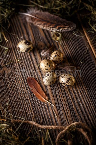 Huevos oscuro edad fondo aves Foto stock © grafvision