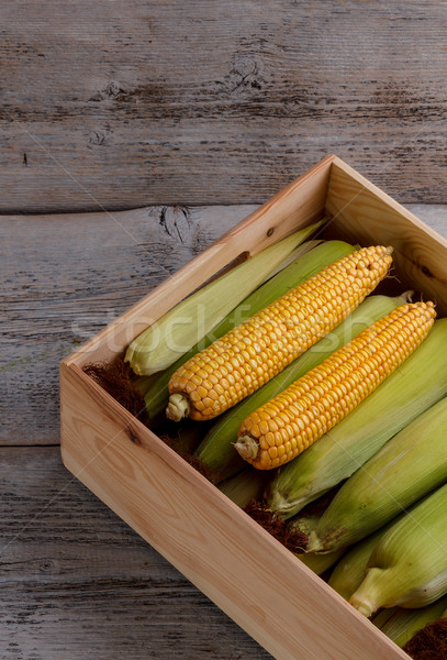Fresh corn Stock photo © grafvision