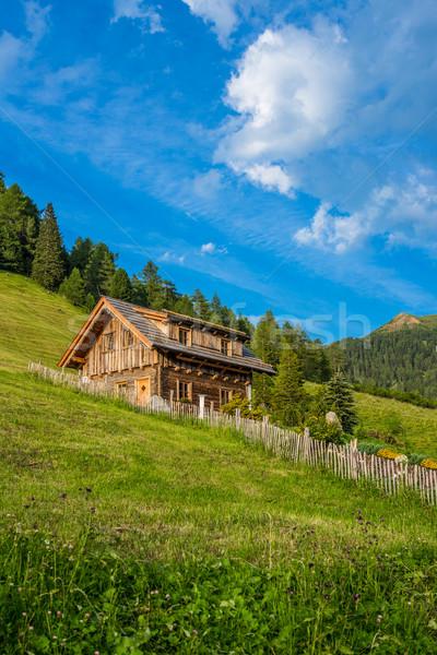 Alpejski kabiny krajobraz lata dziedzinie Zdjęcia stock © grafvision