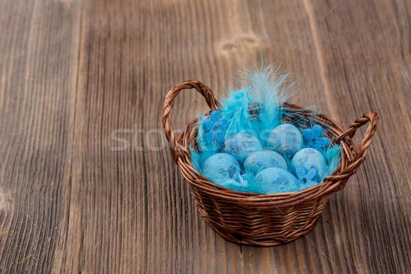 Stock foto: Blau · Eier · legen · voll · Ei