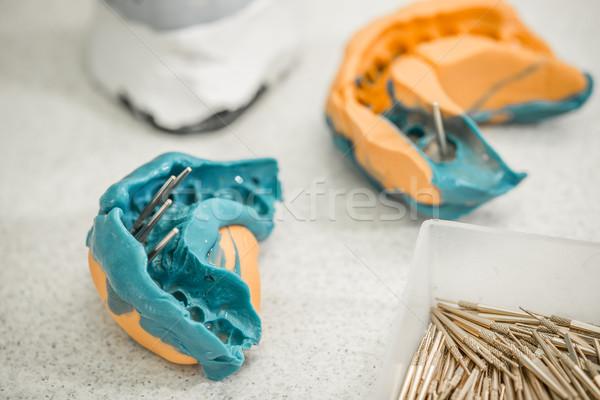 Stomatologicznych wrażenie zębów model medycznych tle Zdjęcia stock © grafvision