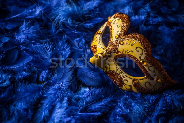 Stock fotó: Női · karnevál · maszk · kék · toll · arc