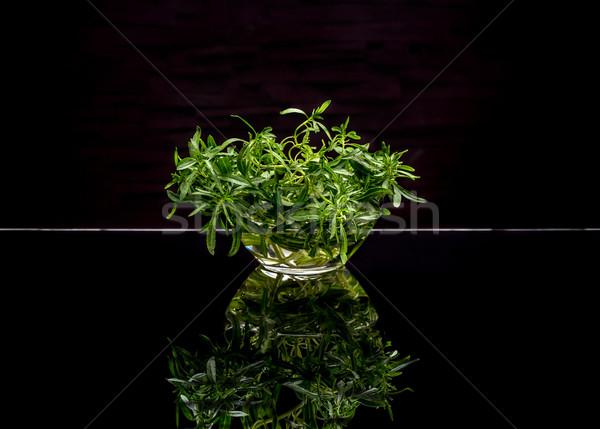 Fresh green thyme Stock photo © grafvision