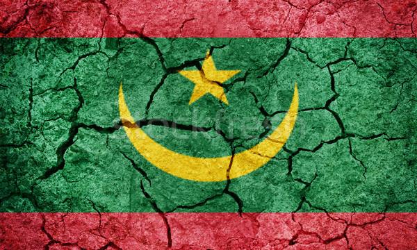 Islamic Republic of Mauritania flag Stock photo © grafvision