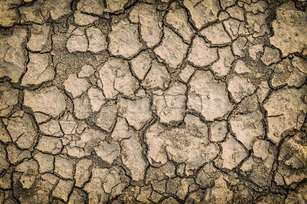 Kuru çatlamak toprak doku arka plan alan Stok fotoğraf © grafvision