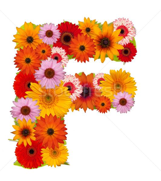 çiçek mektup alfabe yalıtılmış beyaz Stok fotoğraf © grafvision