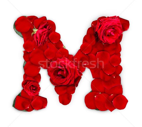 Mektup m kırmızı gül yaprakları yalıtılmış beyaz çiçek Stok fotoğraf © grafvision