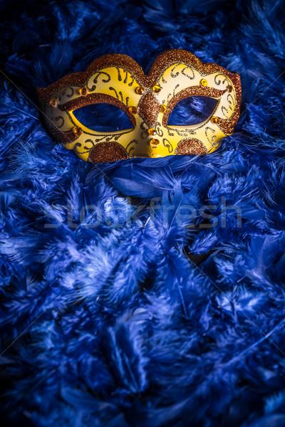 Velencei karnevál maszk kék toll háttér Stock fotó © grafvision