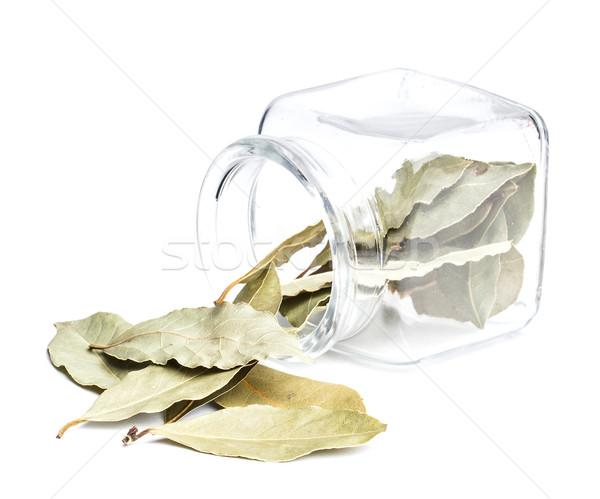 Bay leaves  Stock photo © grafvision