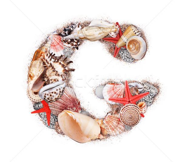 G betű kagyló izolált fehér óceán homok Stock fotó © grafvision