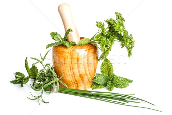 Herbs in mortar  Stock photo © grafvision