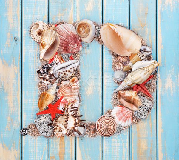 D betű kagyló kék fából készült természet háttér Stock fotó © grafvision
