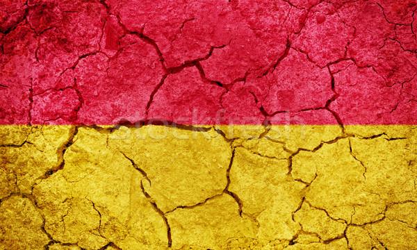 Áustria bandeira secar terra terreno textura Foto stock © grafvision