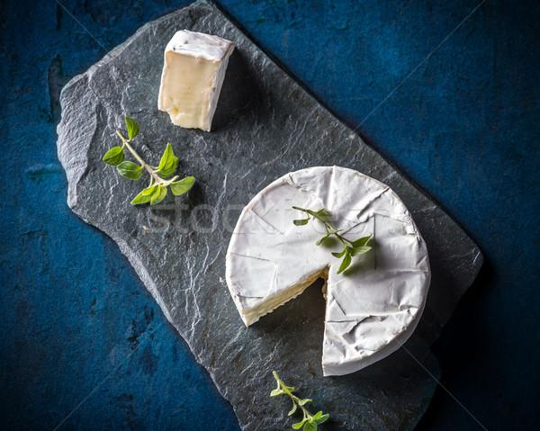 Queijo camembert queijo fundo azul branco refeição Foto stock © grafvision