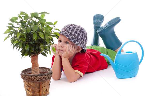 Little gardener boy  Stock photo © grafvision