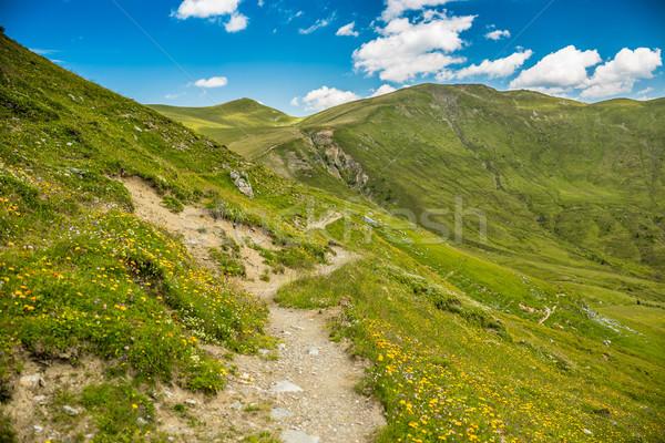 Path to mountains Stock photo © grafvision