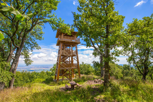 Stock photo: Wooden watch tower