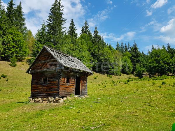Eenzaam houten huis bergen hemel boom Stockfoto © grafvision