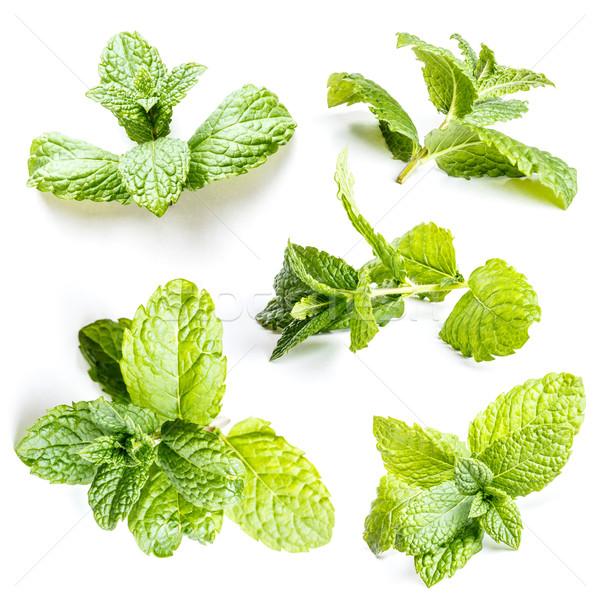 De folhas conjunto branco comida saudável Foto stock © grafvision