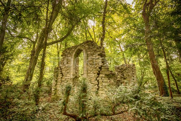древних руин лес каменные парка история Сток-фото © grafvision