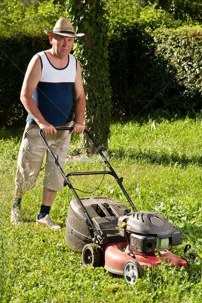 man mowing the lawn Stock photo © grafvision