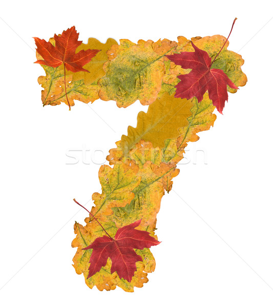 Number of autumn leaves . Number 7 Stock photo © grafvision