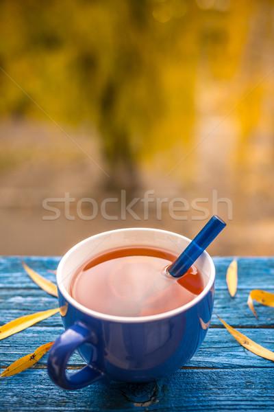 青 茶碗 ぼやけた 秋 木材 背景 ストックフォト © grafvision