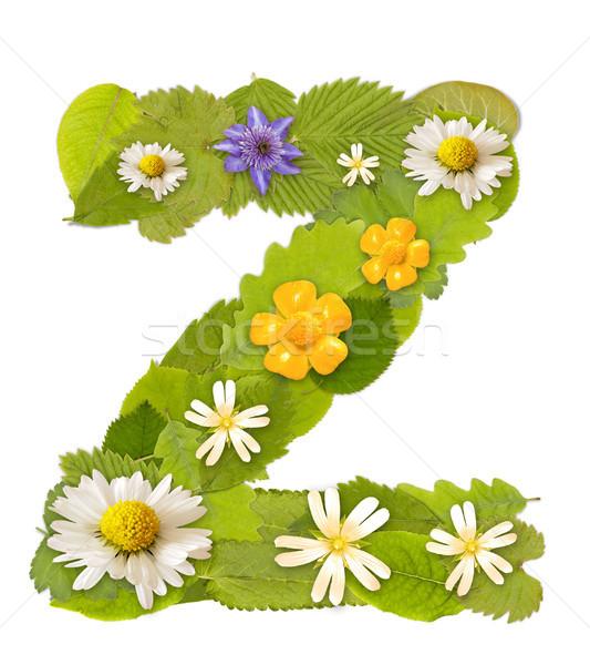 緑色の葉 花 フォント 白 文字z ツリー ストックフォト © grafvision
