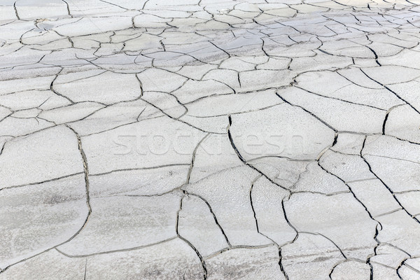 Cracked soil ground Stock photo © grafvision