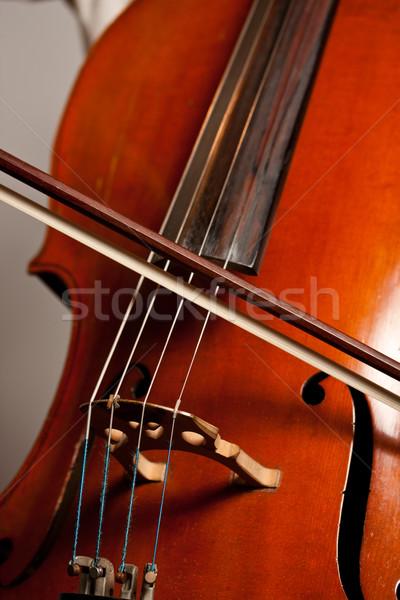 Stockfoto: Spelen · cello · speler
